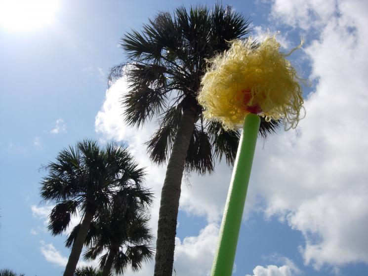 Safe T Palms
